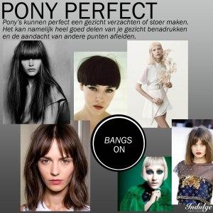 Pony perfect